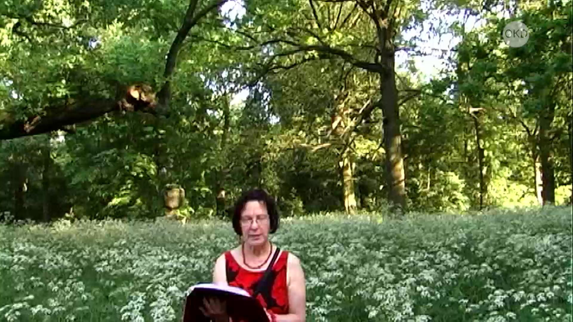 Watch Offener Kanal Dessau